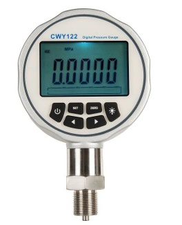 Precision digital pressure gauge - CWY122