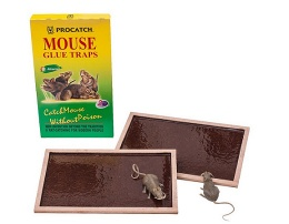 Mouse Glue Trap - R-101, R-103