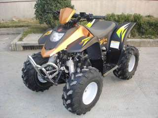 ATV Motorcycle - ATV Motorcycle - Zebra 100cc